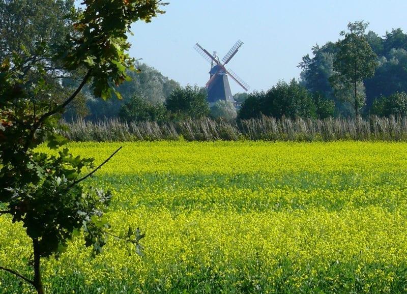 Hof Eggers - Vierlande - Riepenburger Mühle