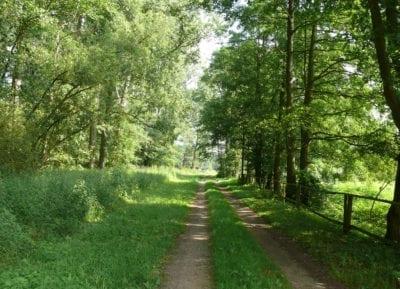Natur-Rundwanderweg auf Hof Eggers, Station 13