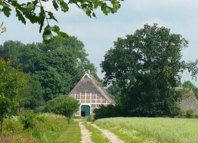 Natur-Rundwanderweg auf Hof Eggers, Station 15