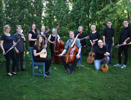 """Kammermusik """"umsonst und draußen"""" auf Hof Eggers"""